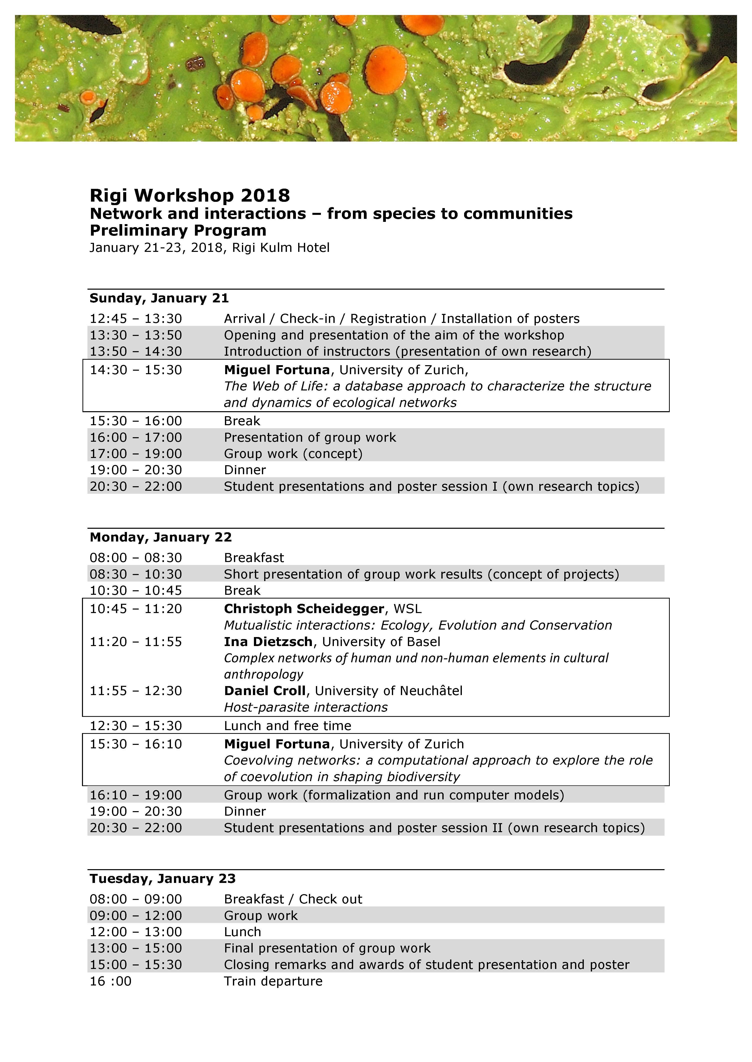 Rigi Flyer Program